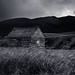 Montana Barn Black and White