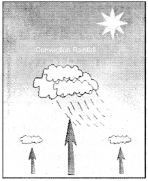 RBSE Solutions for Class 11 Physical Geography Chapter 15 Condensation and Rainfall 2