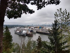 The SS Pacific Tracker moored in Portland