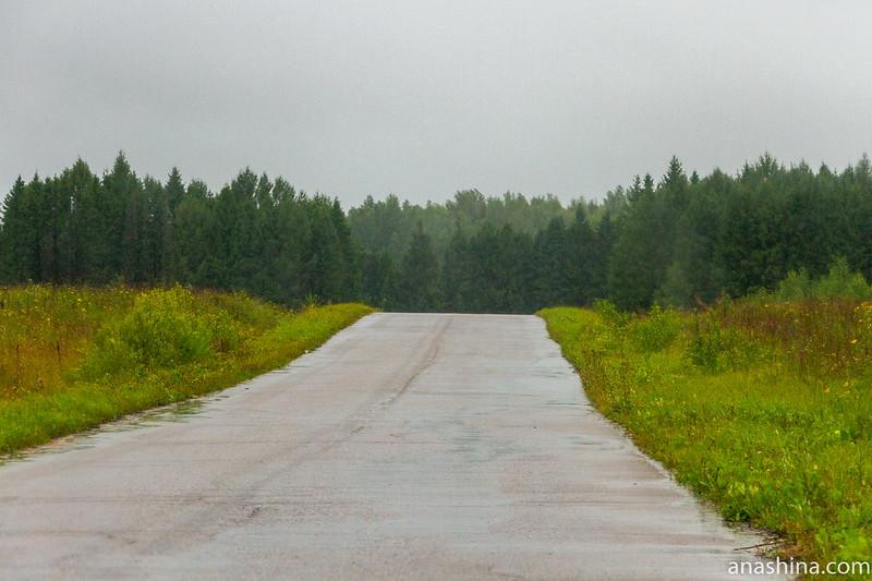 Дорога, дождь
