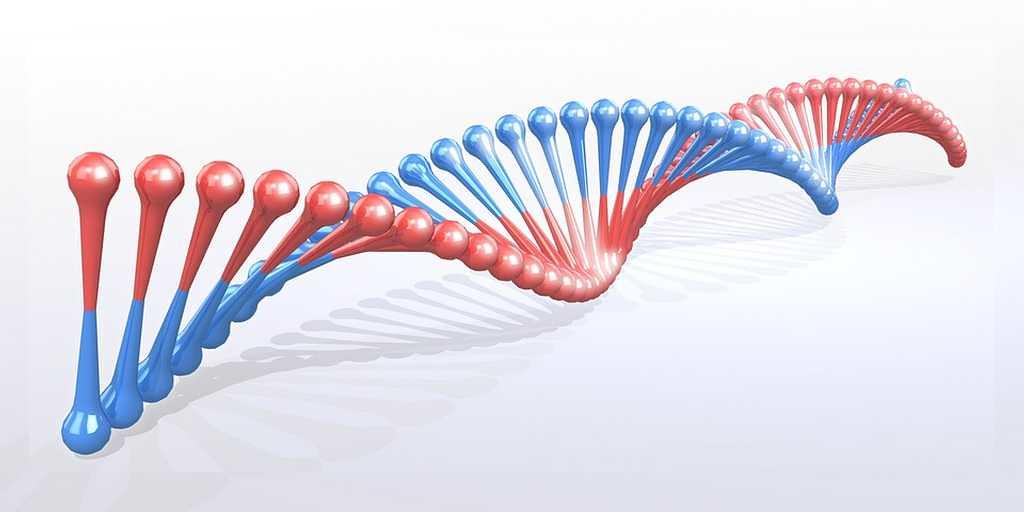 outil-CRISPR-plus-efficace