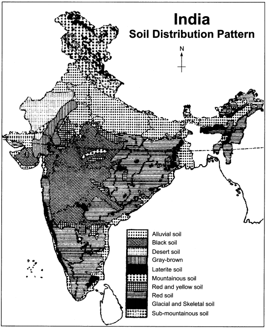 RBSE Solutions for Class 11 Indian Geography Chapter 9 Soil of India 3