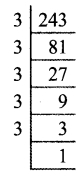 Tamilnadu Board Class 9 Maths Solutions Chapter 2 Real Numbers Ex 2.5 3a