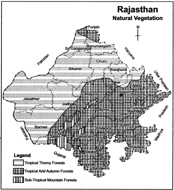 RBSE Solutions for Class 11 Indian Geography Chapter 13 Rajasthan Climate, Vegetation and Soil 3