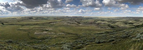 Grasslands East Block - one of many panos