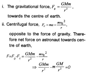 HSSlive Plus One Physics Notes Chapter 8 Gravitation 40