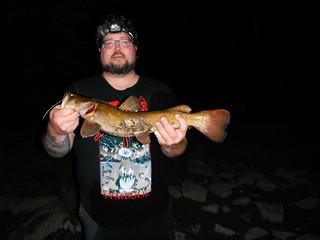 Photo of man holding a flathead catfish