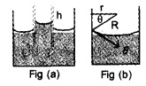 HSSlive Plus One Physics Chapter Wise Questions and Answers Chapter 10 Mechanical Properties of Fluids 14