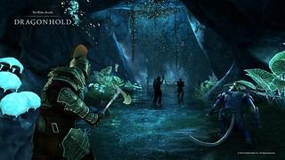Dragonhold_MoonlitCove_GlowingRoom