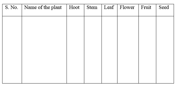 Getting to Know Plants Class 6 Extra Questions Science Chapter 7 - 12