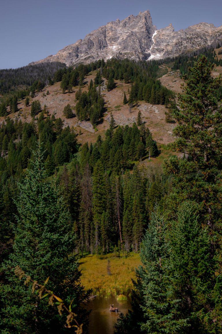 08.31. Grand Teton