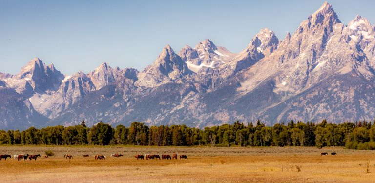 09.02. Grand Teton