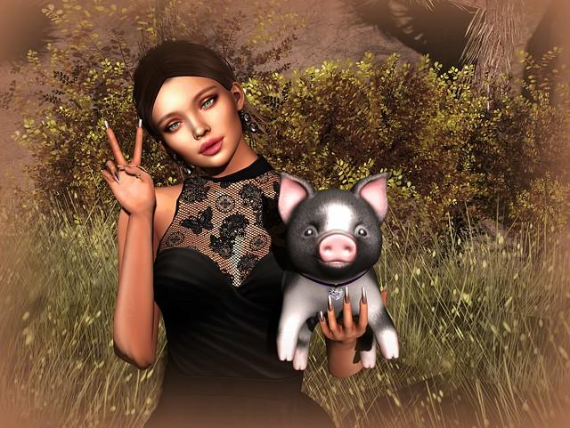 Sweet Little Pig
