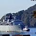 L14  HMS Albion  ( @ 0910 19 Sept 2019 )