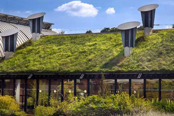 Eco-Friendly Living And Sustainable Development Essay