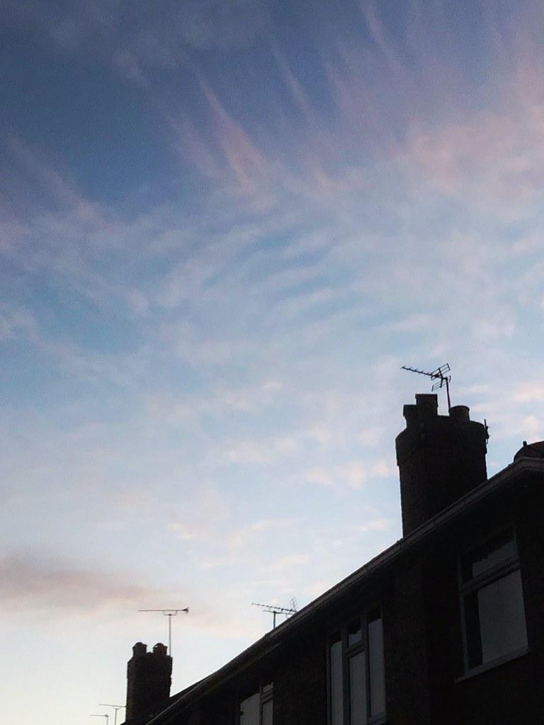 Rooftop (254/365)