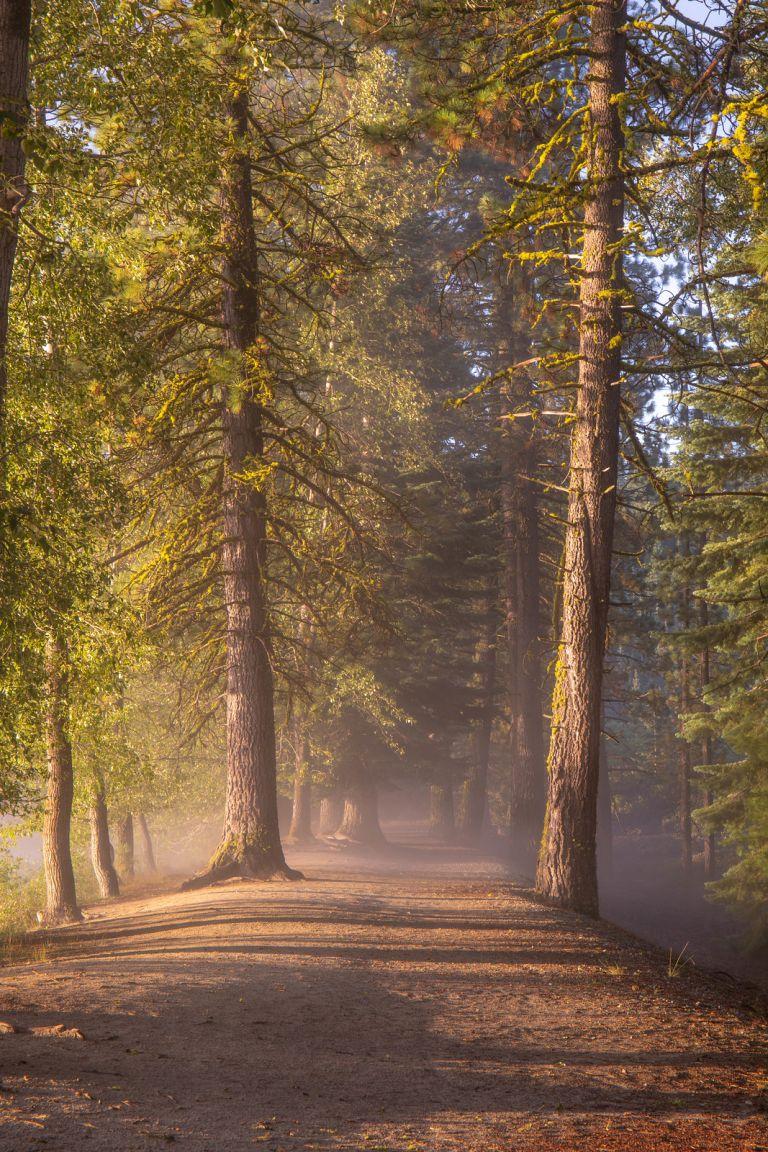 08.11. Lassen National Park