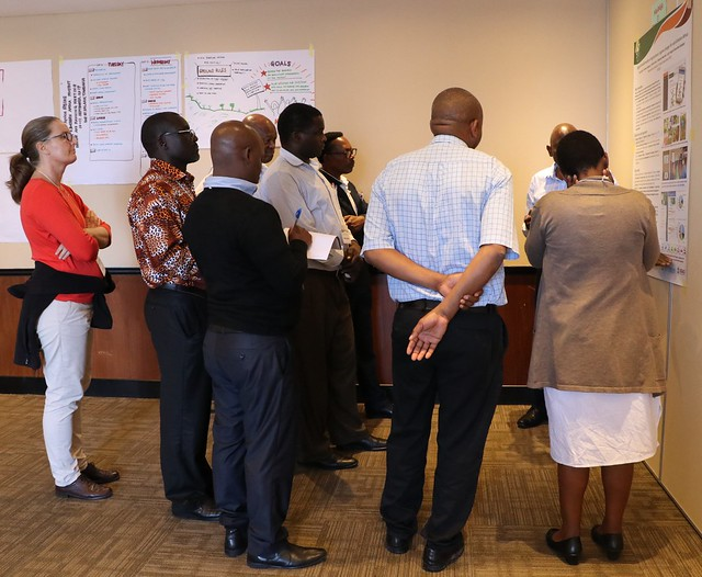 Participants mull over a poster during the Africa RISING East and Southern Africa Project review and planning meeting held in Dar es Salaam, Tanzania on 10 – 11 September 2019. Photo credit: Eveline Massam/ IITA.