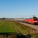 145 017 und 266 442 mit DGS 99640 (Regensburg - Rüdersdorf) am 21.09.2019 in Mockern