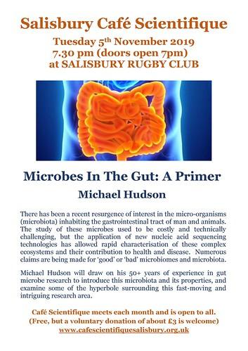 Poster for Michael Hudson