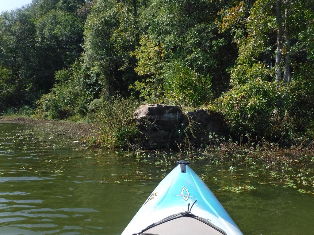 Berry Shoals Pond-29