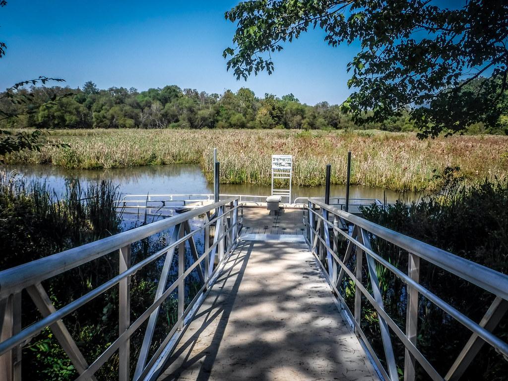 Berry Shoals Pond-1