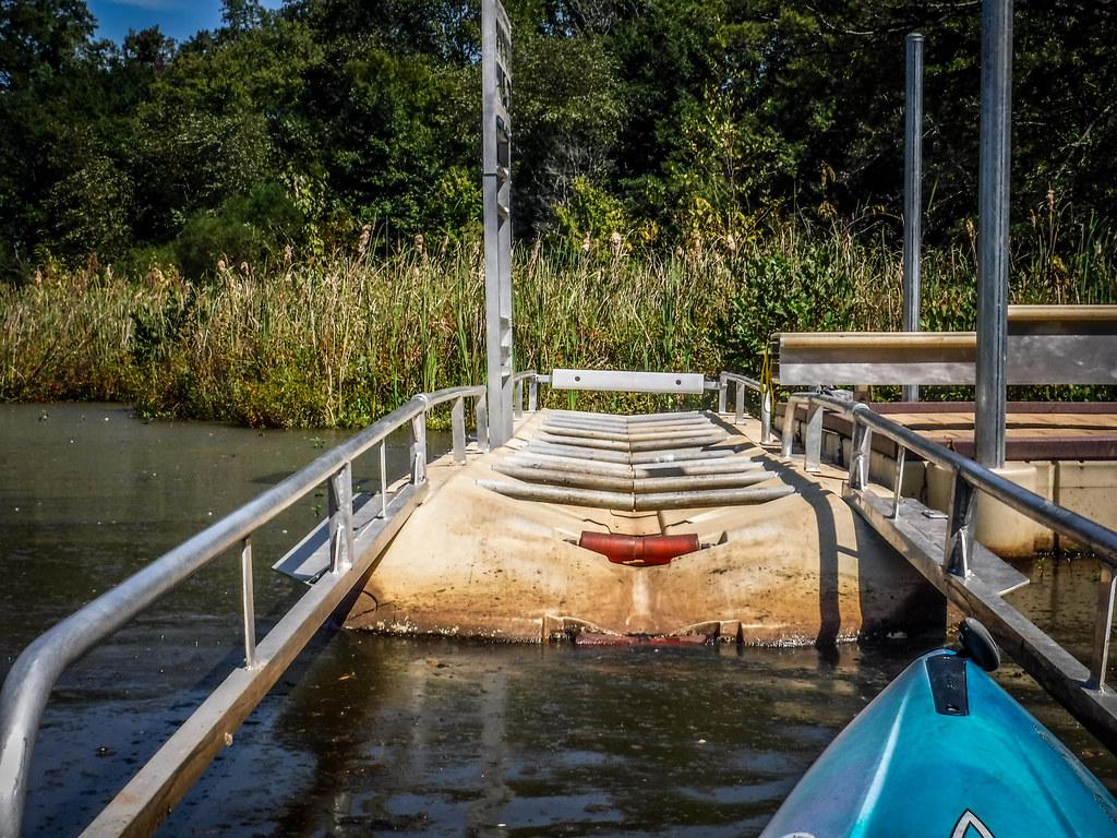 Berry Shoals Pond-62