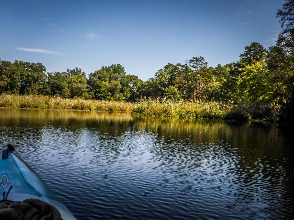 Berry Shoals Pond-57