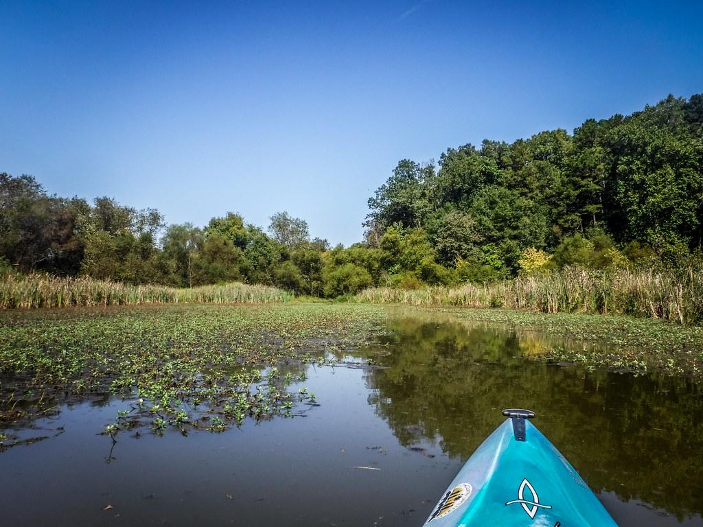 Berry Shoals Pond-7