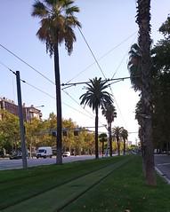 Barcelona, unha visión particular