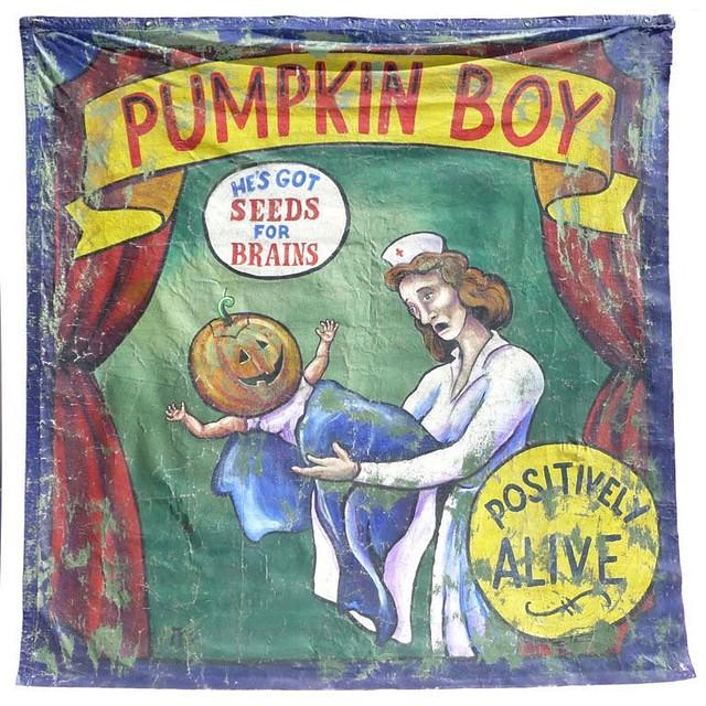 Pumpkin Boy He's Got Seeds For Brains