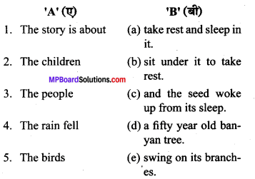 MP Board Class 6th General English Chapter 1 The Tree 3
