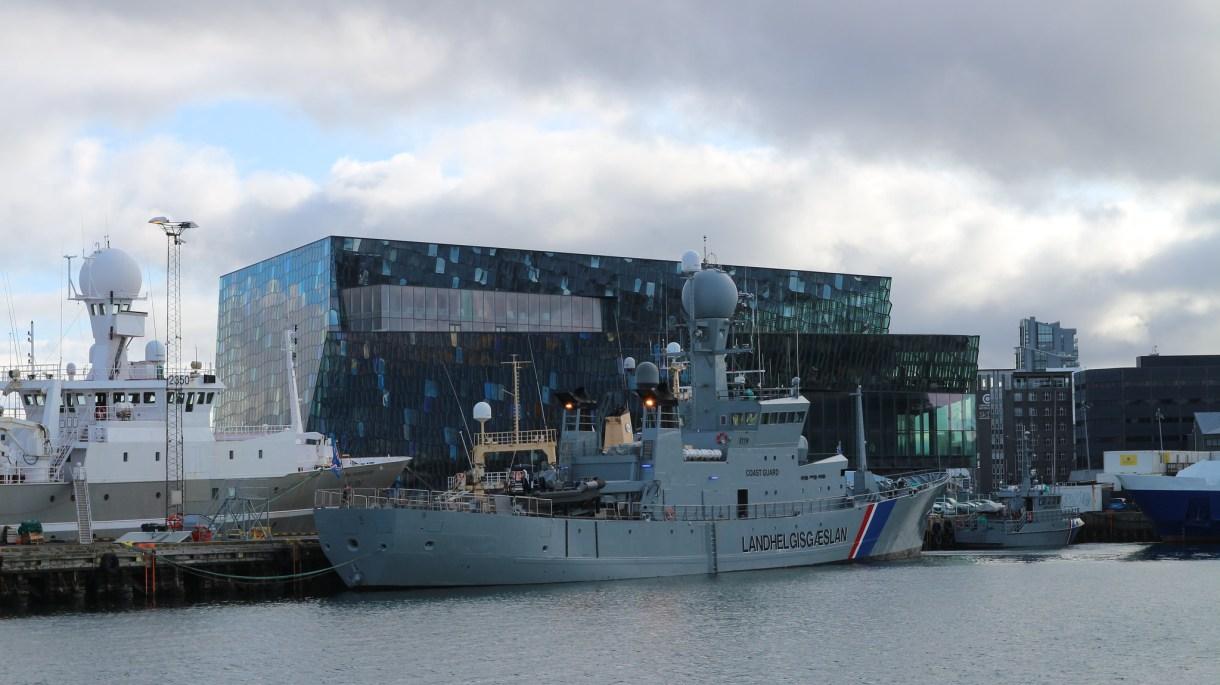 Avistamiento de ballenas, delfines y cetáceos desde Reikiavik (Islandia), ¡incluye vídeo!