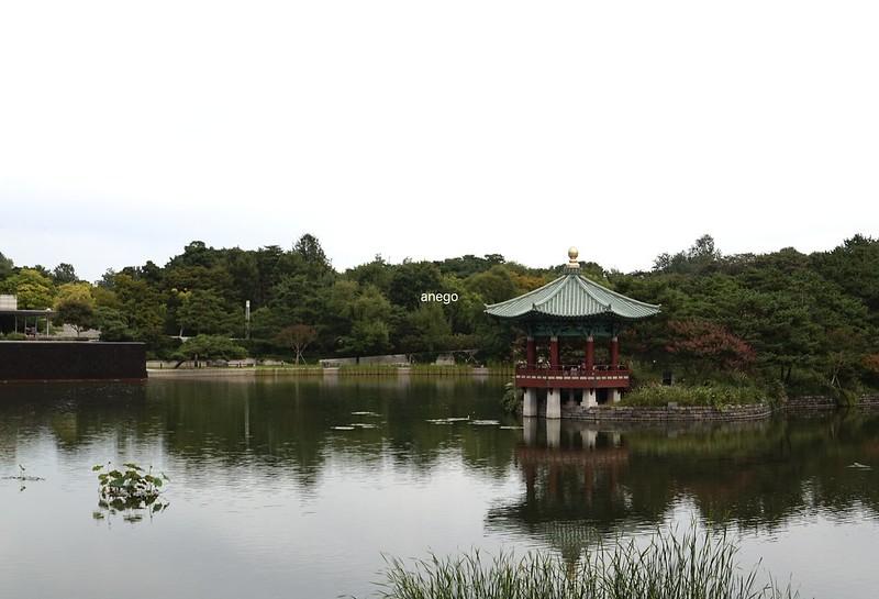 中央博物館 池