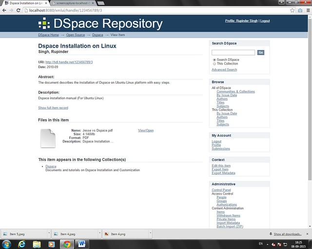 Dspace Item Preview