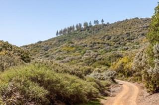 Gemütliche Nationalpark-Bummelei