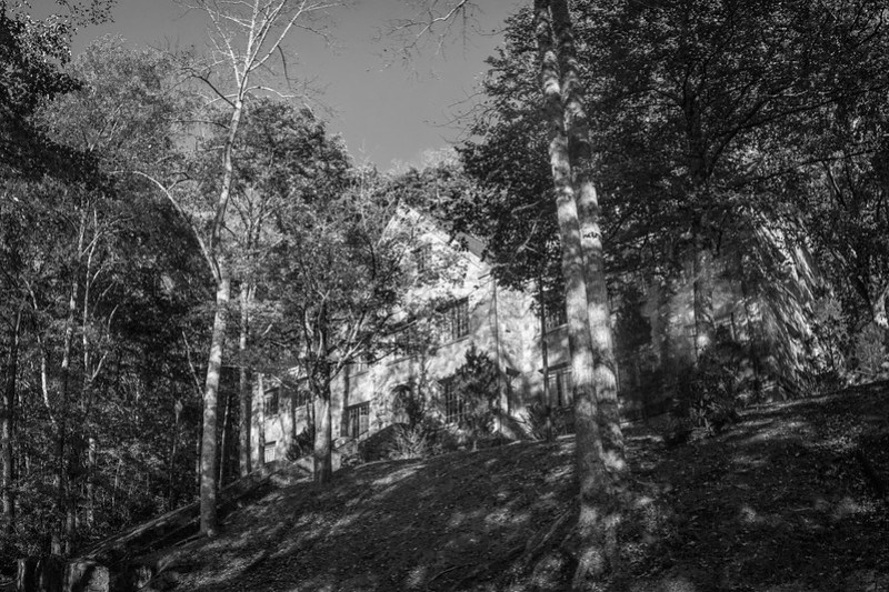 looking up, old stone lodge (Winnsborough), nestled in the trees, speckled light, near sunset, Montreat, North Carolina, Nikon D3300, Fish-Eye-Takumar 17mm f-4, 10.23.19