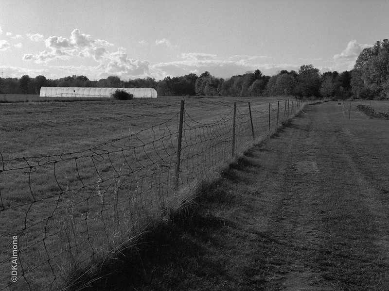 Pitney Community Farm 2