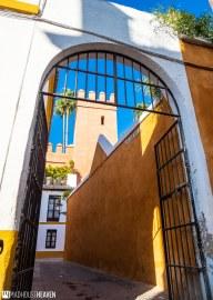 Spain - 0801
