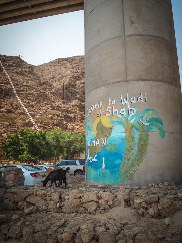 Wadi (42)