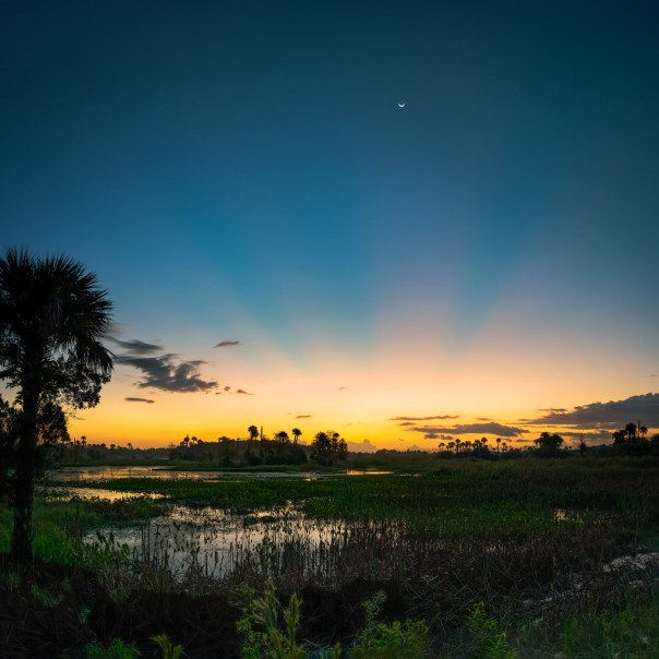 Marsh, moon, and sun rays