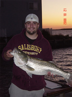 Photo of man holding a 34-inch striped bass