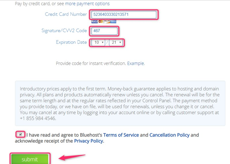 BlueHost Payment For WordPress Services