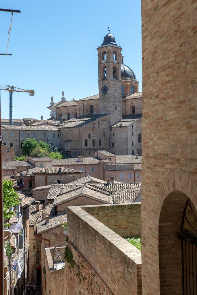 Urbino_02052019-474A1393-yuukoma