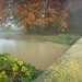 Erewash Autumn