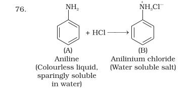 NCERT Exemplar Class 12 Chemistry Chapter 13 Amines