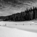 Deep Snow Landscape