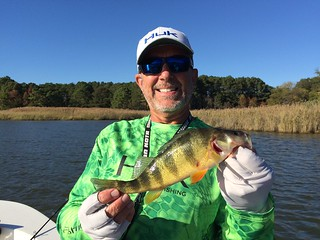 Photo of man holding a yellow perch
