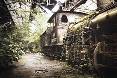 The forgotten train