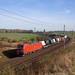 DB 193 380 + Güterzug/goederentrein/freight train   - Ovelgünne